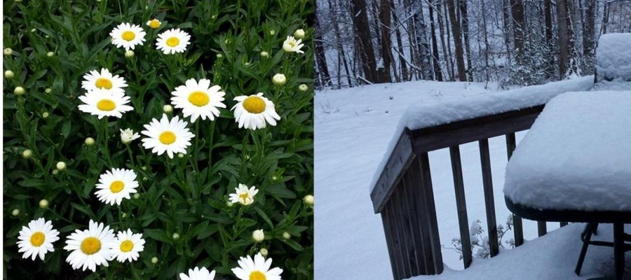 The seasons change and so can your committee members.