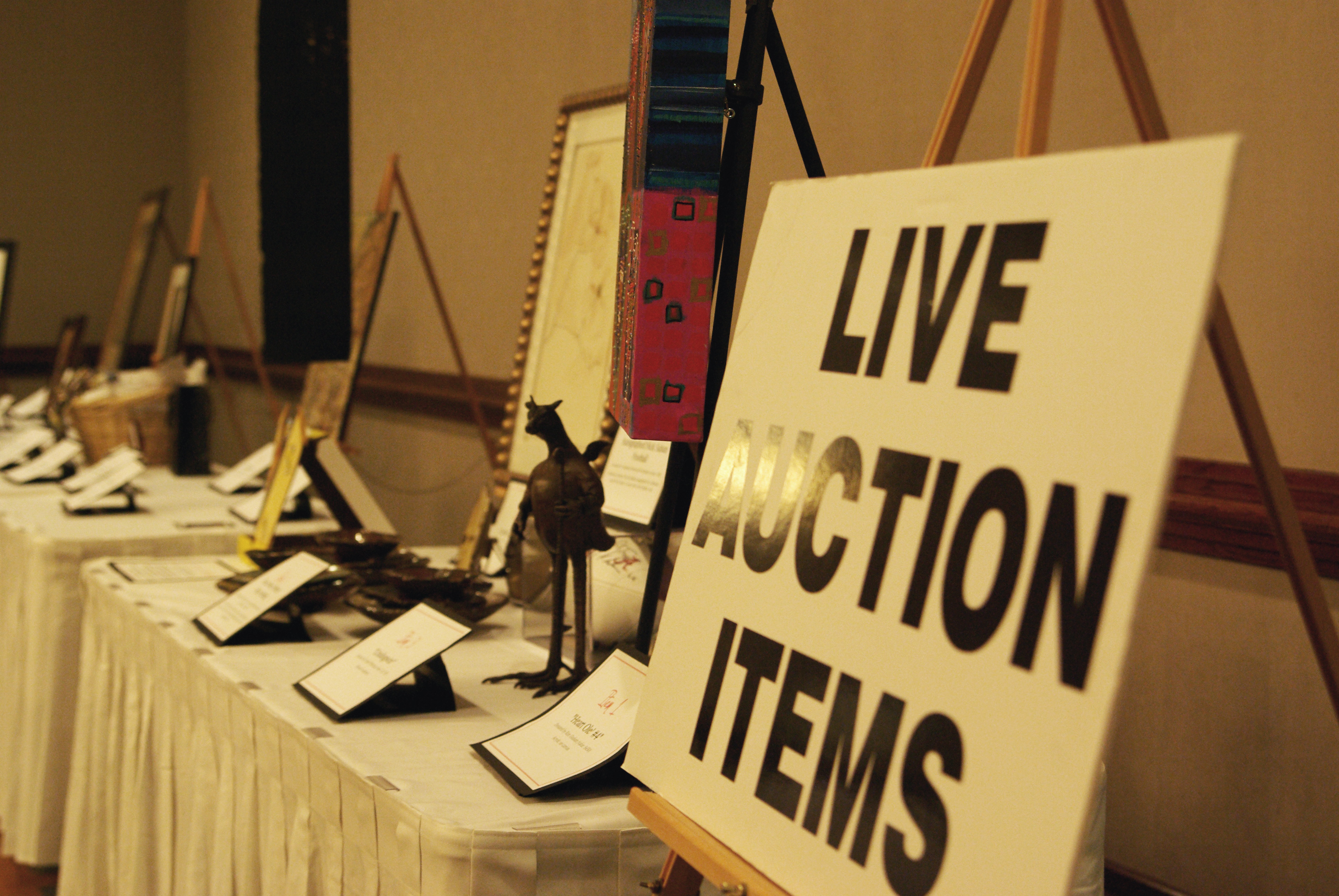 Live charity auction items