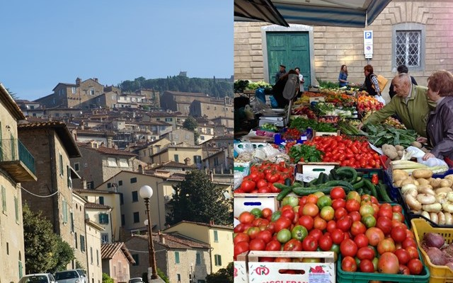 Nonprofit consignment opportunites in Italy